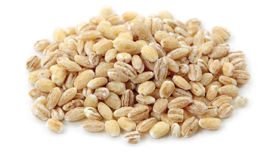 grains farro biologique entier recette nutrition
