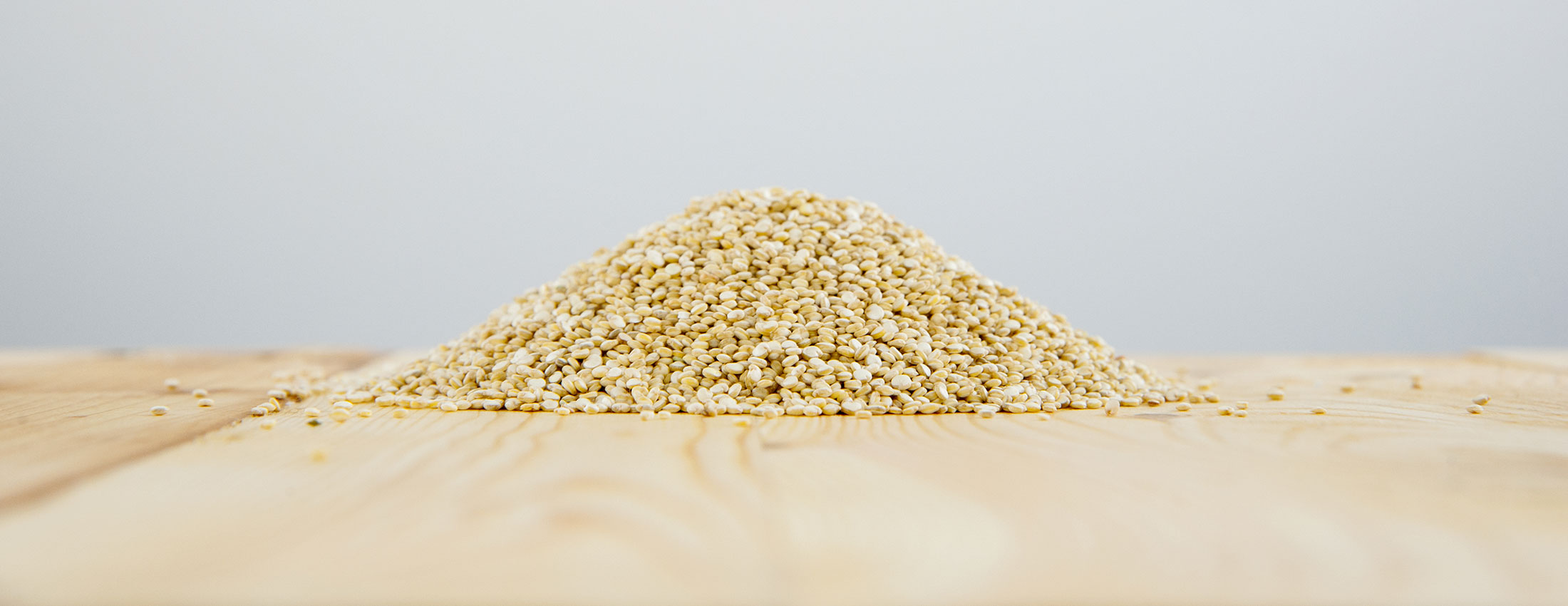 quinoa blanc biologique grains bolivie