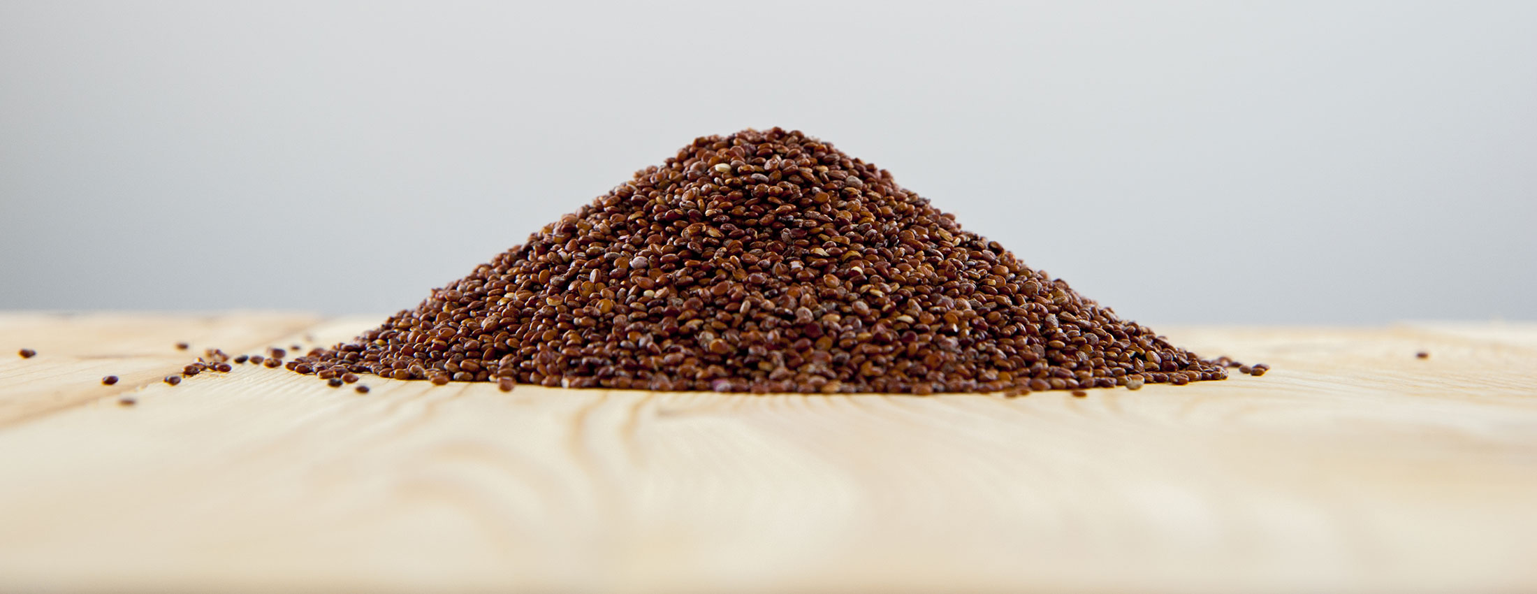 quinoa rouge biologique grains bolivie pseudocereale