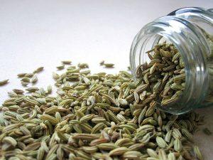 graines fenouil fennel biologique clef champs problemes intestinaux
