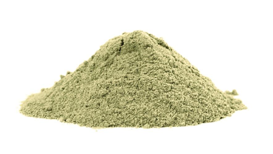 poudre moringa biologique feuilles superaliments inde proprietes arbre