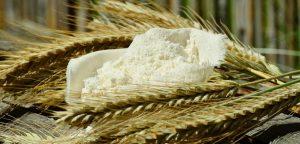 farine ble tout usage non blanchie biologique meunerie milanaise estrie versatile