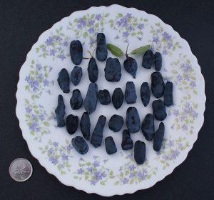 camerise variete utilisations culinaires fruit collations desserts marinades vinaigrettes gout saveur acidite