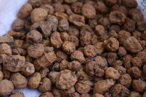 noix tigrees biologique tubercule fibres magnesium espagne recettes origine