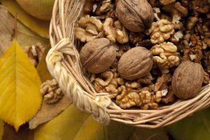 noix grenoble gras omega bienfaits coeur cardiovasculaire
