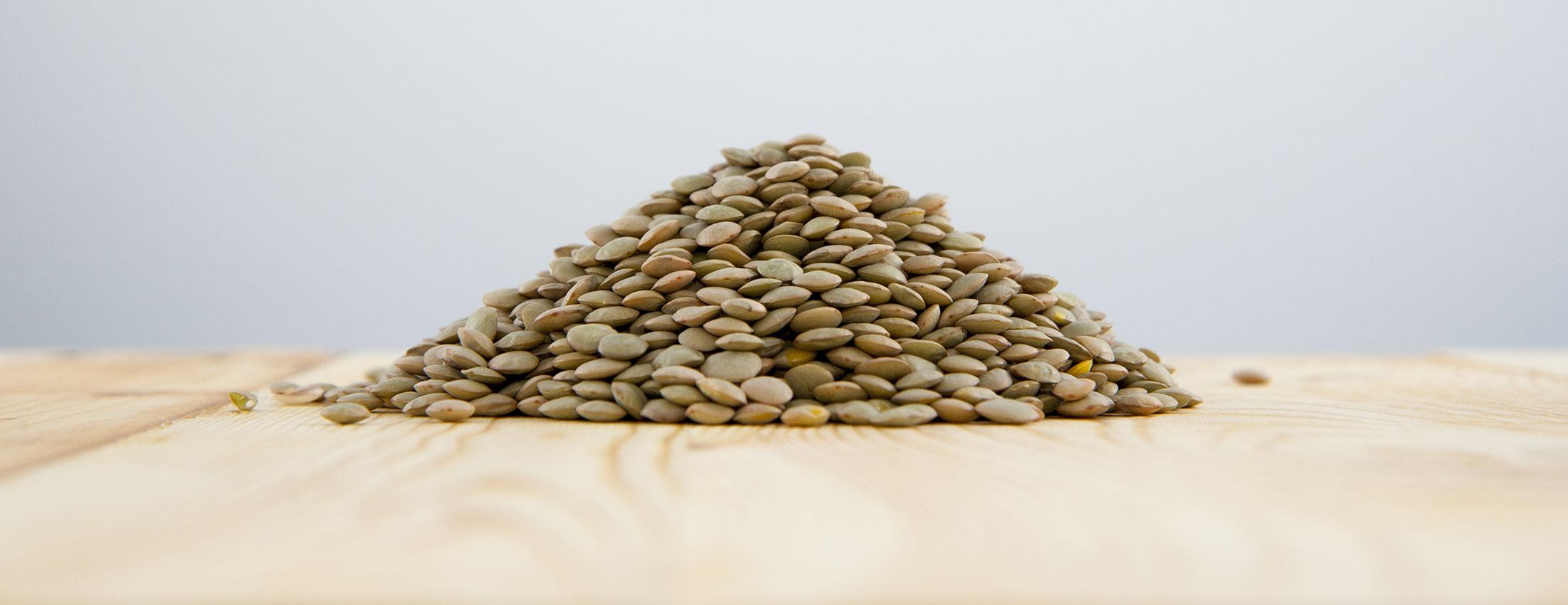 lentilles vertes biologique legumineuses fibres proteines recettes cuisson