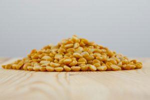 pois jaunes fendus biologiques legumineuses fibres proteines cuisson trempage recettes