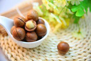 noix macadam afrique sud silo vrac varietes origine cuisine recettes