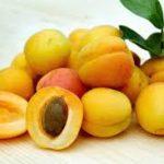 abricots fruit seche biologiques noyau turquie recolte origine