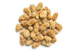 baies mures fruit biologique turquie seche cuisine recettes proprietes nutrition