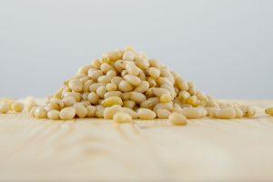 noix pin pignon biologique chine nutrition